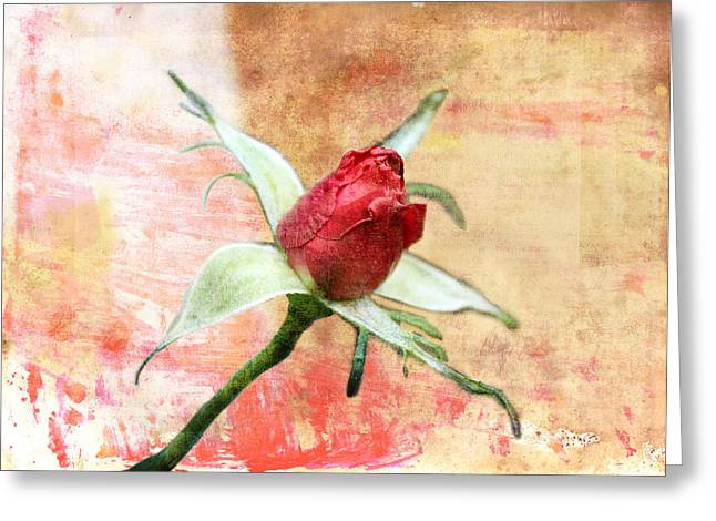 Greeting Card featuring the digital art Red Flower 1 by Helene U Taylor