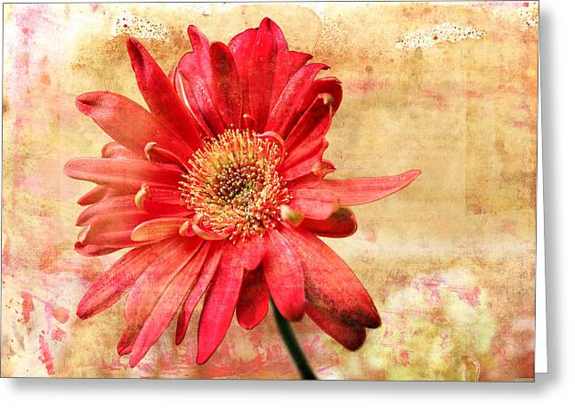 Greeting Card featuring the digital art Red Flower 2 by Helene U Taylor