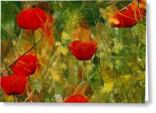 Red Flower Field Greeting Card by Yury Malkov