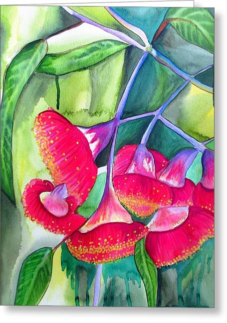 Red Flowering Gumnuts Greeting Card by Sacha Grossel