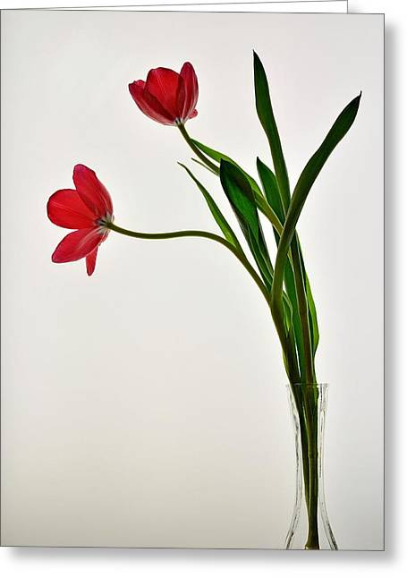 Red Flowers In Glass Vase Greeting Card