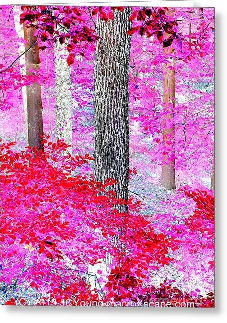 Red Forest Greeting Card by JCYoung MacroXscape