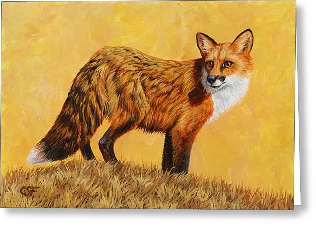 Red Fox Painting - Looking Back Greeting Card by Crista Forest