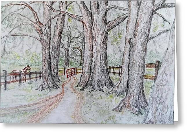 Red Gate Greeting Card by Joan Mace
