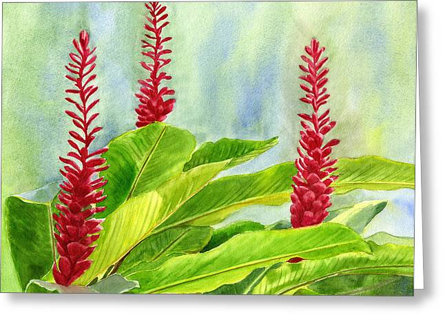 Red Ginger Flowers With Background Greeting Card by Sharon Freeman