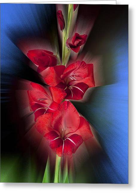 Greeting Card featuring the photograph Red Gladiola by Mark Greenberg
