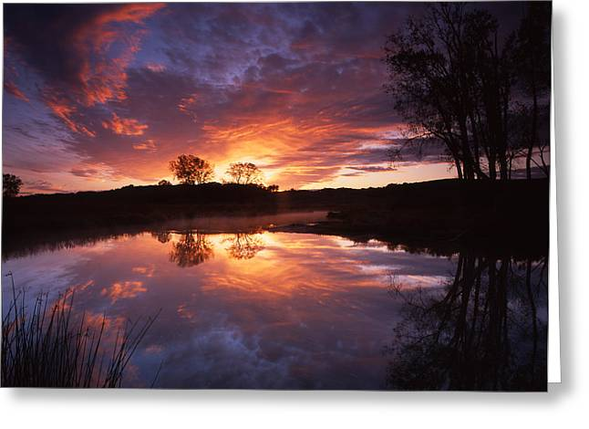 Red Glow In The Morn Greeting Card by Ray Mathis