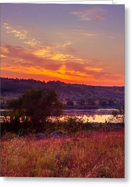 Greeting Card featuring the photograph Red Grass by Dmytro Korol