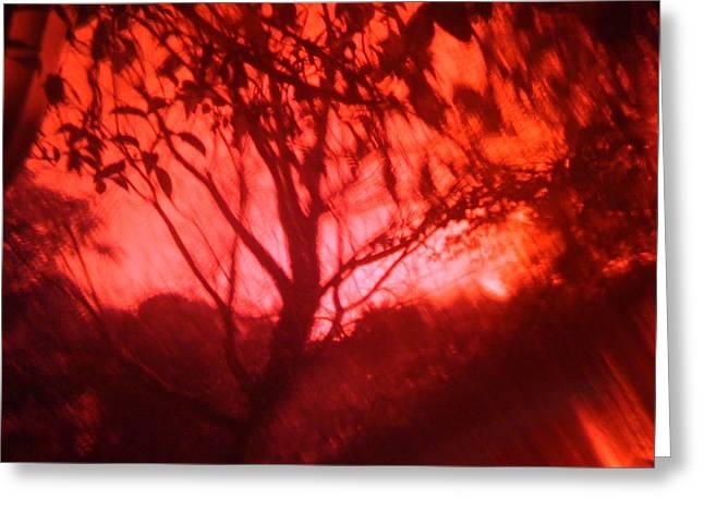 Red Haze Greeting Card by Rakesh Babwah