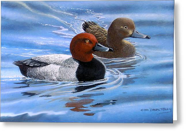 Red Headed Ducks Greeting Card by Dan Terry