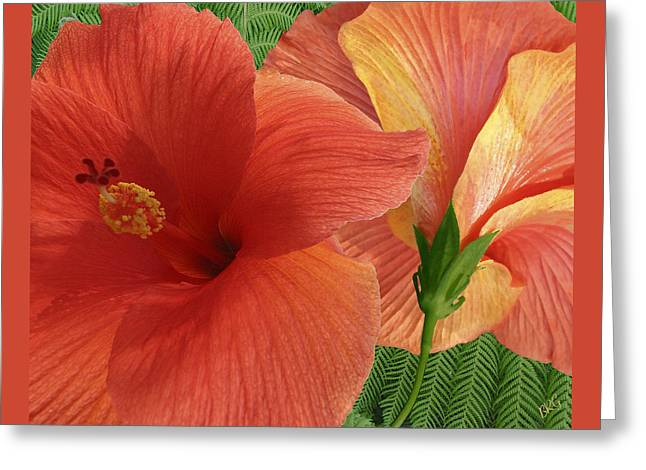 Red Hibiscus Greeting Card by Ben and Raisa Gertsberg