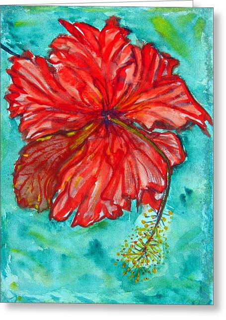 Red Hibiscus Flower Greeting Card by Kelly     ZumBerge