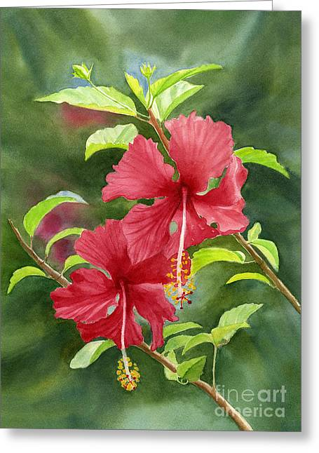 Red Hibiscus With Background Greeting Card by Sharon Freeman
