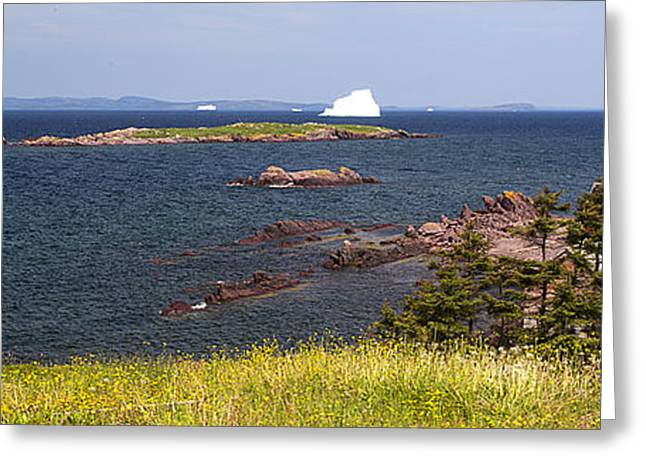 Red House By The Sea Greeting Card by Patsy Zedar