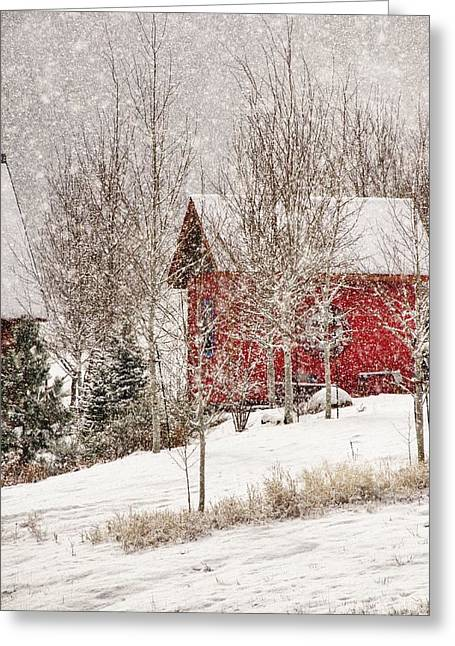 Red House In A Snowstorm Greeting Card by Janis Knight