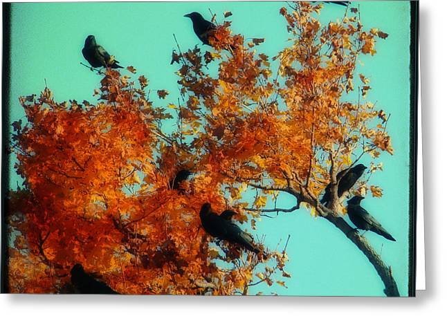 Red Leaves Among The Ravens Greeting Card