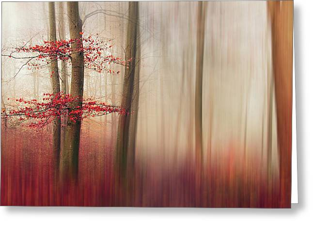 Red Leaves. Greeting Card