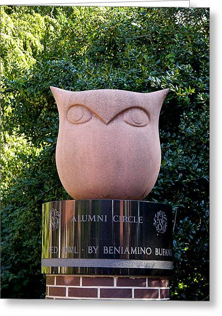 Red Owl At Temple Greeting Card by Richard Reeve