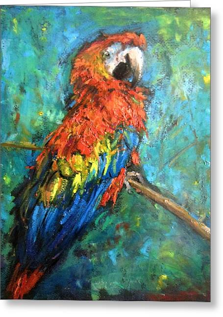 Red Parot Greeting Card