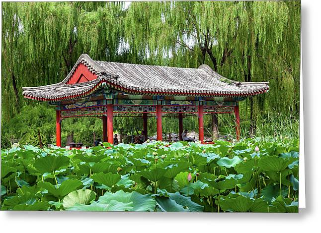 Red Pavilion Lotus Pads Garden Temple Greeting Card