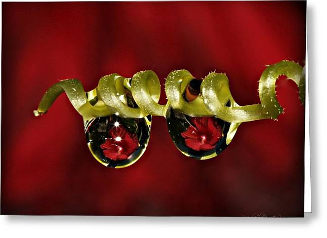 Red Pearls Greeting Card by Michaela Preston