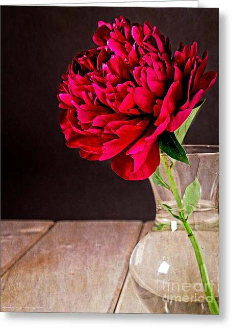 Red Peony Flower Vase Greeting Card by Edward Fielding