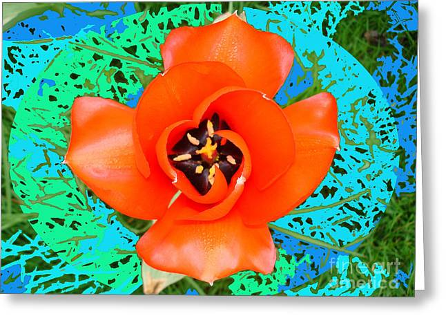 Red Perfect Tulip By M.l.d. Moerings  2008 Greeting Card