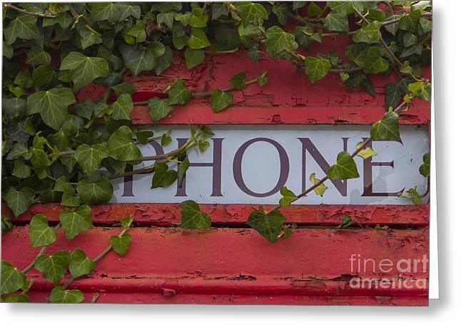 Red Phone Box Greeting Card by Brian Roscorla