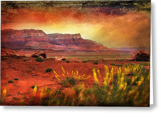 Red Planet Greeting Card by Barbara Manis