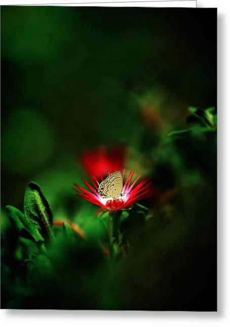 Red Planet Greeting Card by Suradej Chuephanich