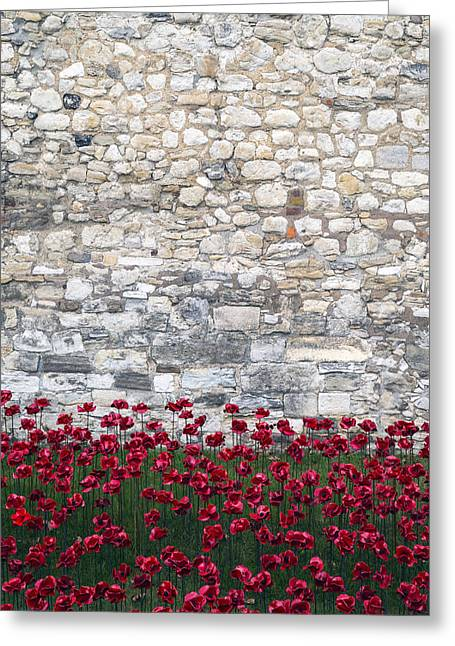 Red Poppies Greeting Card by Joana Kruse