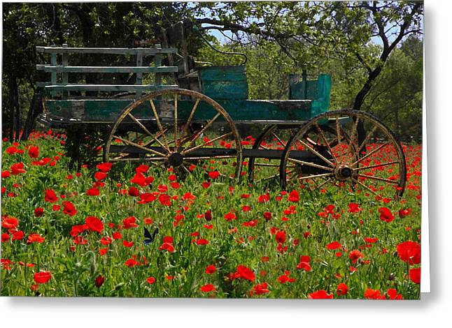Red Poppies With Wagon Greeting Card