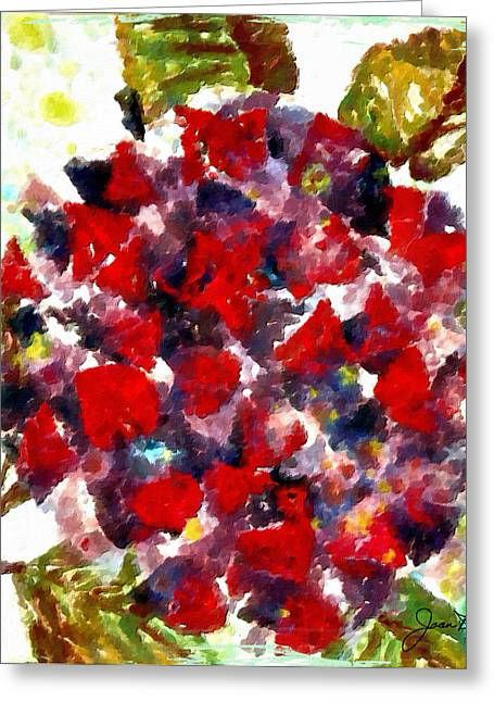 Red Purple Flower Greeting Card by Joan Reese