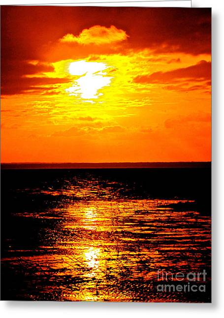 Red Rage Of Dusk Greeting Card by Q's House of Art ArtandFinePhotography