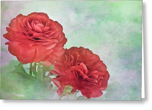 Red Ranunculus Greeting Card by David and Carol Kelly