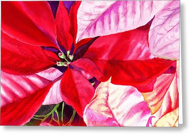 Red Red Christmas Greeting Card by Irina Sztukowski