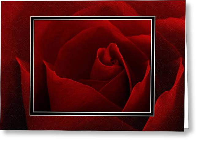 Red Red Rose II Greeting Card