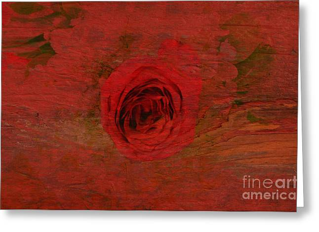 Red Red Rose Greeting Card by Kathleen Struckle