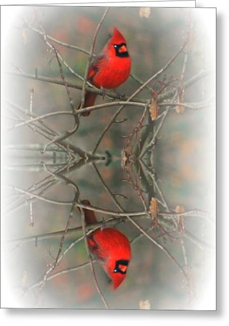 Red Reflection Greeting Card by Barbara S Nickerson