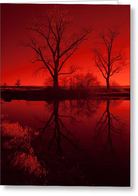 Red Reflections Greeting Card by Miguel Winterpacht