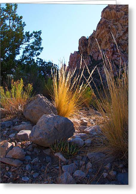 Red Rock Morning Light Greeting Card