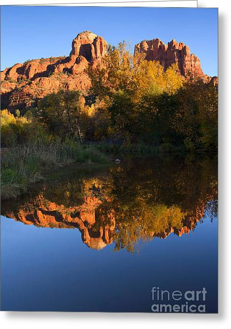 Red Rock Reflections Greeting Card by Mike  Dawson