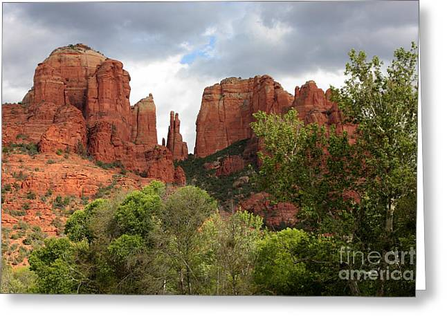 Red Rocks Of Sedona With Spring Trees Greeting Card by Carol Groenen