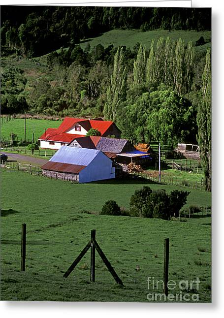 Red Roofed Barn Chiloe Island Greeting Card by Craig Lovell