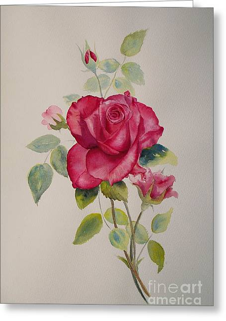 Greeting Card featuring the painting Red Rose by Beatrice Cloake