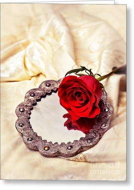 Red Rose Greeting Card by Amanda Elwell