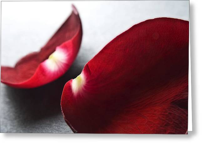 Red Rose Flower Petals Abstract II - Closeup Flower Photograph Greeting Card by Artecco Fine Art Photography