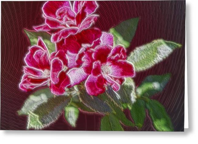 Red Rose Needlework Greeting Card