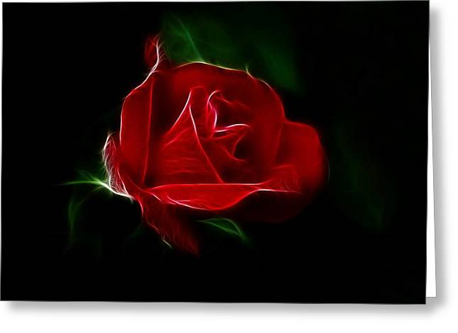 Red Rose Greeting Card by Sandy Keeton