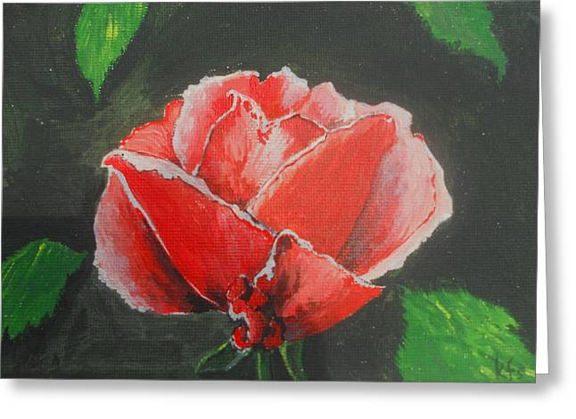Red Rose Study Greeting Card by Kathy Spall